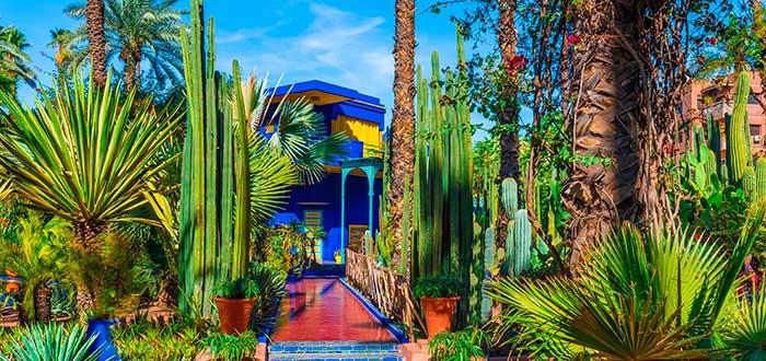 Qué ver en Marrakech | Jardín Majorelle