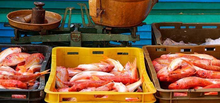 Qué ver en Split | Mercado del Pescado