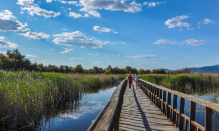 Qué ver en Ciudad Real | 10 Lugares Imprescindibles