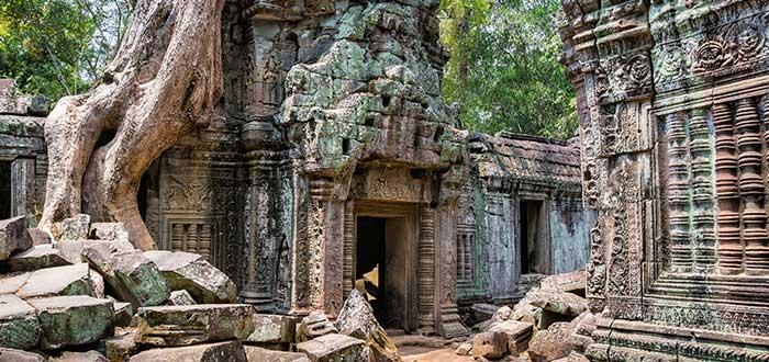 Qué ver en Camboya | Ta Prohm