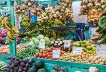 Comida típica de Costa Rica | 10 Platos que debes probar