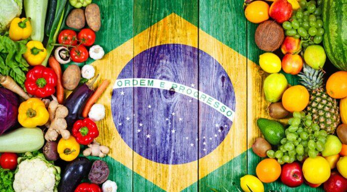 Comida típica de Brasil | 10 Platos que debes probar