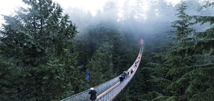 Qué ver en Canadá | El Puente Colgante de Capilano
