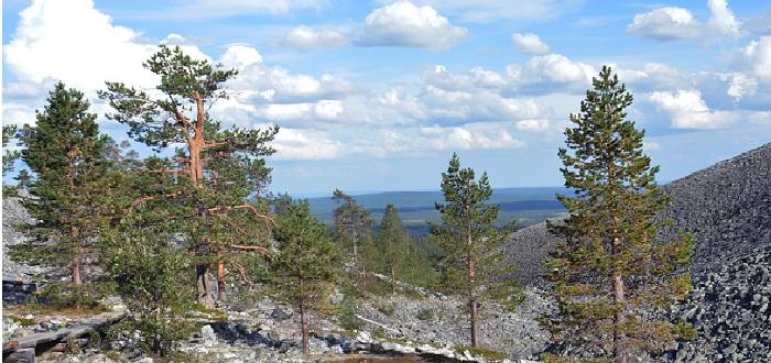 Qué ver en Finlandia   Yllastunturi