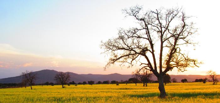 10 Parques Nacionales de España | Cabañeros