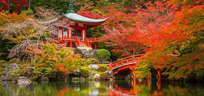 Ciudades más bonitas del mundo | Kioto