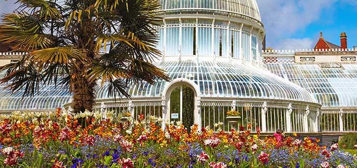 Qué ver en Belfast | Jardín Botánico de Belfast