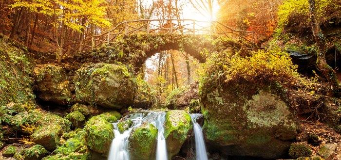 Qué ver en Luxemburgo | Mullerthal Trail
