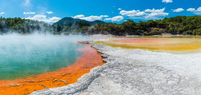 Qué ver en Nueva Zelanda | Wai-O-Tapu