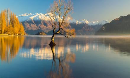 Qué ver en Nueva Zelanda   10 Lugares Imprescindibles
