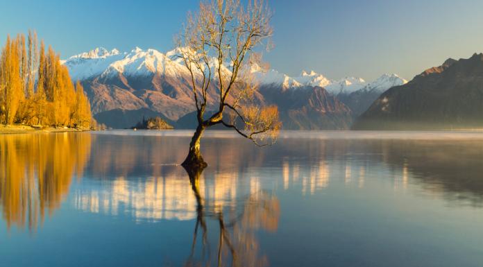 Qué ver en Nueva Zelanda | 10 Lugares Imprescindibles