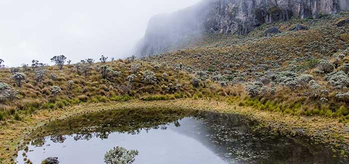 Qué ver en Colombia | Parque Nacional Natural Los Nevados