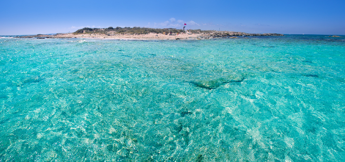 Qué ver en Ibiza   Isla de Espalmador