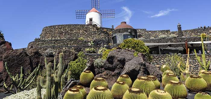 Qué ver en Lanzarote | Jardín de Cactus de Lanzarote