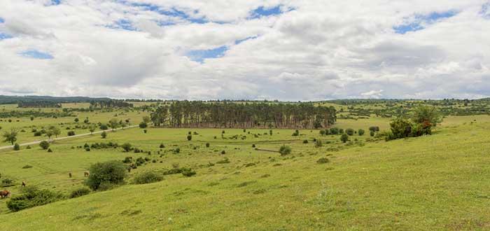 Qué ver en Navarra | Parque natural Urbasa-Andía