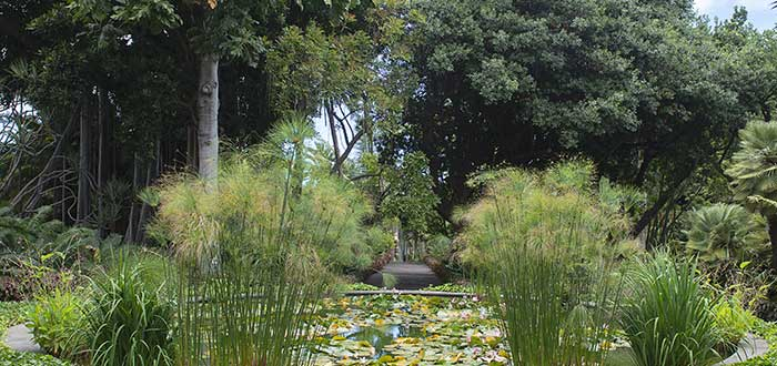 Jardines Sitio Litre