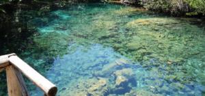 Qué ver en Punta Cana | Reserva Ecológica Ojos Indígenas