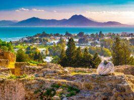 Qué ver en Túnez   10 Lugares Imprescindibles