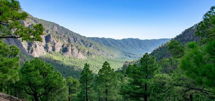 Qué ver en La Palma | Mirador de la Cumbrecita