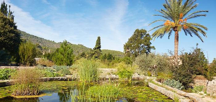 Qué ver en Sóller   Jardin Botanico de Soller