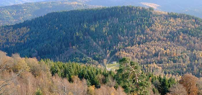 Qué ver en Baden-Baden   Merkur