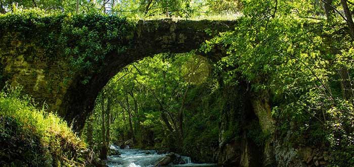 Puentes del Malpaso