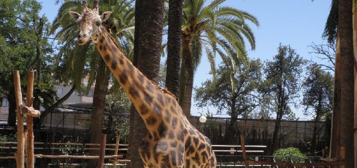 Zoobotánico Jerez
