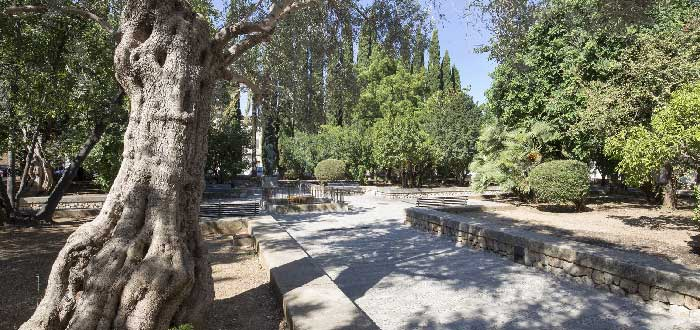 Jardines de Joan March