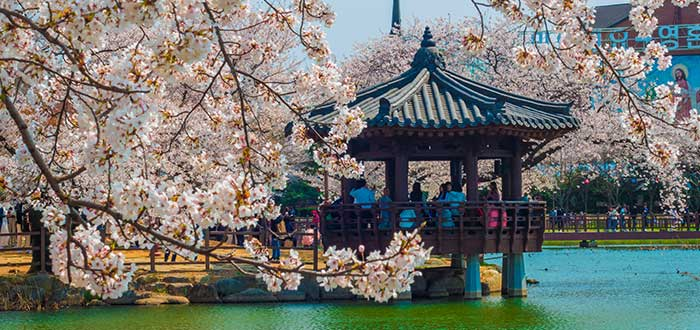 Ciudades de Corea del Sur | Gwangju
