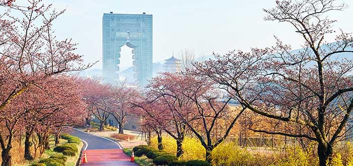 Ciudades de Corea del Sur | Gyeongju