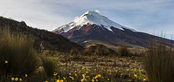 Qué ver en Ecuador   Parque Nacional Cotopaxi