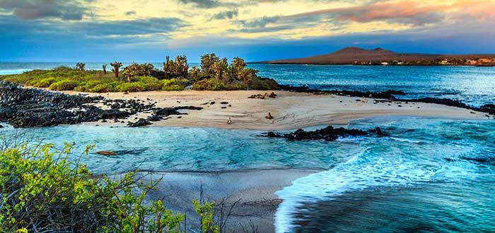 Qué ver en Ecuador   Parque Nacional Galápagos
