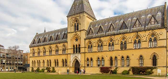 Qué ver en Oxford | Museo de Historia Natural de la Universidad de Oxford