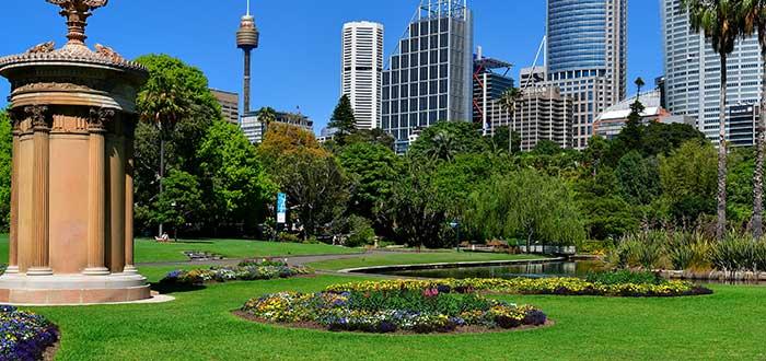 Qué ver en Sidney | Real Jardín Botánico de Sidney