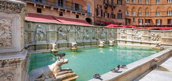 Qué ver en Siena | Fuente Gaia