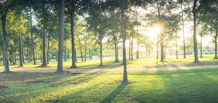 Qué ver en Perpiñán: Parc Sant-Vicens.