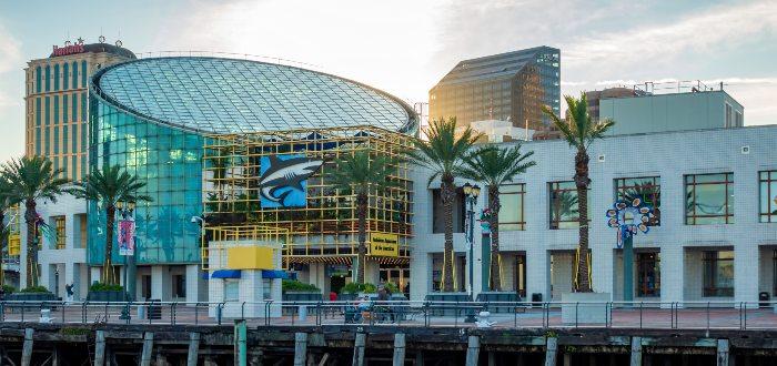 Qué ver en Nueva Orleans, Audubon Aquarium of the Americas