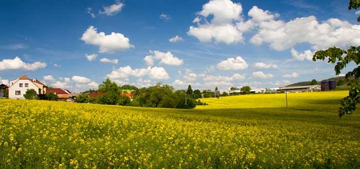 Cómo seleccionar las mejores casas rurales para tus vacaciones. 2