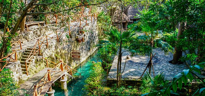 Descubre las mejores actividades para disfrutar en Parque Playa del Carmen 3
