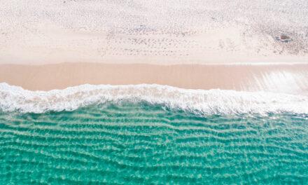 Descubre las mejores actividades para disfrutar en Parque Playa del Carmen