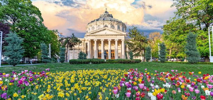 Qué ver en Bucarest | Ateneo Romano