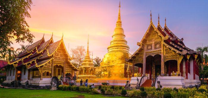 Mai Wat Phra Singh