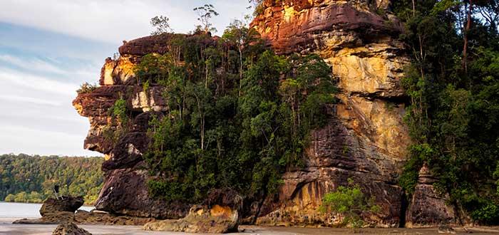 Qué ver en Malasia   Parque Nacional de Bako