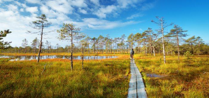 Estonia, Parque nacional de Lahemaa