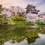 Qué ver en Nara | 10 Lugares Imprescindibles