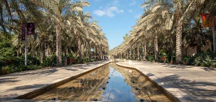 Qué ver en Abu Dhabi | Umm Al Emarat Park