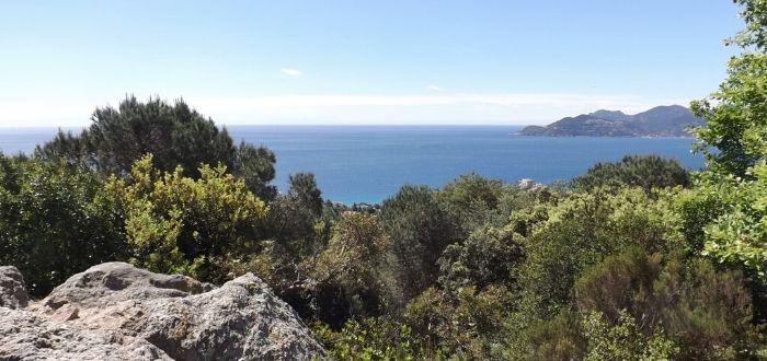 Qué ver en Cannes. Parc naturel forestier de la Croix des Gardes