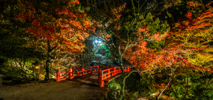 Qué ver en Hiroshima. Parque Momijidani
