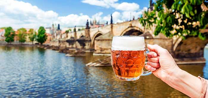 Bebida típica de la República Checa   Pivo