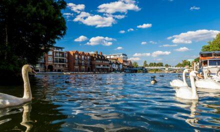 Qué ver en Windsor | 10 Lugares Imprescindibles
